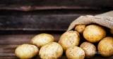 Когда картофель становится опасным